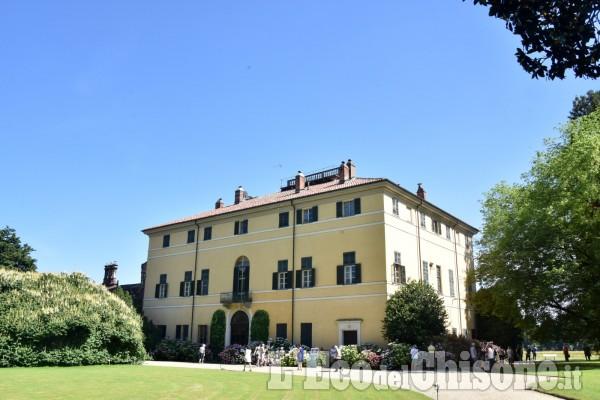 Le ortensie di Villa Doria