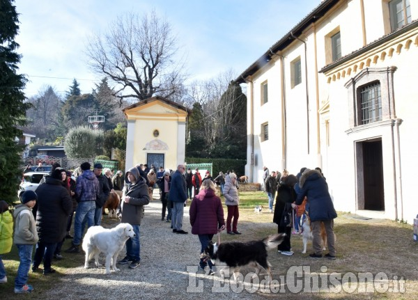 Pinerolo: Al Colletto la festa di Sant' Antonio