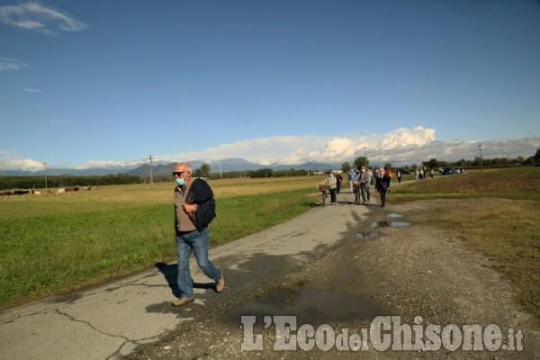 None: passeggiata enogastronomica in campagna