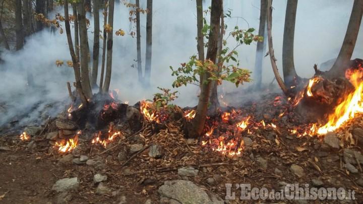 Incendio Cumiana: «Il Canadair non può volare, chiediamo l'aiuto di squadre da fuori Provincia»