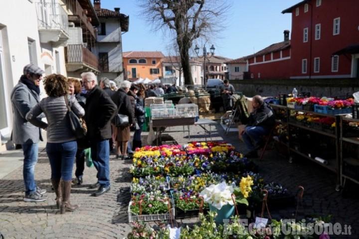 Pancalieri: domenica, fiera vivaistica con oltre 60 espositori