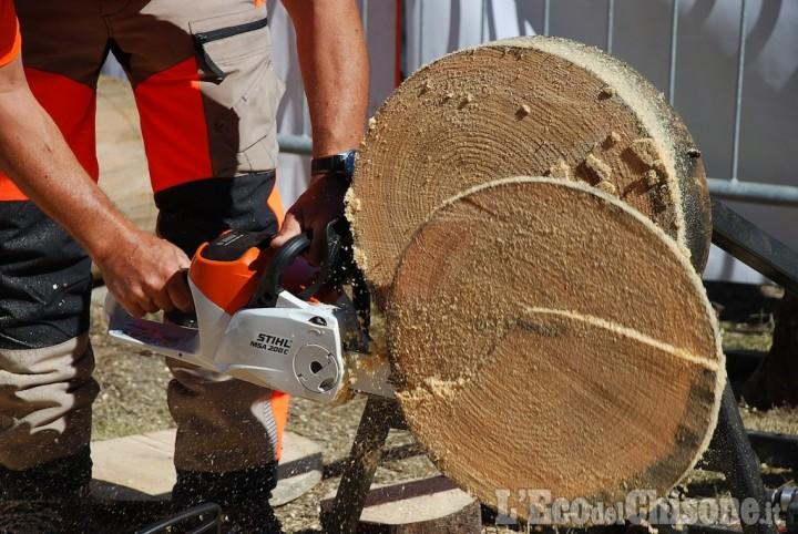 Legninvalle a Usseaux: due giorni dedicati alla filiera del legno