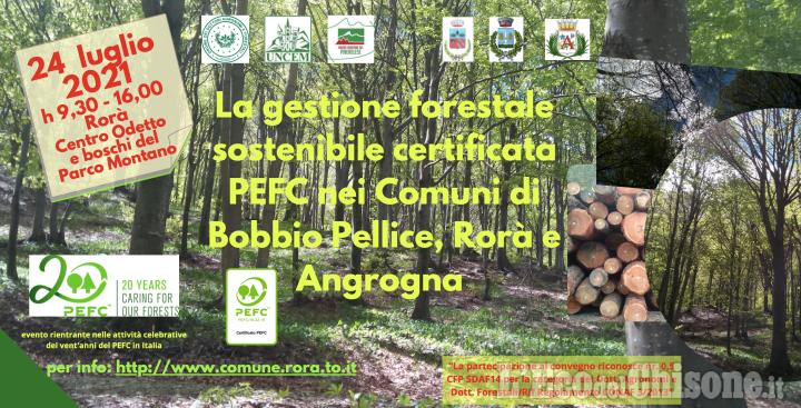 Rorà: convegno sulla gestione forestale sostenibile certificata Pefc in Val Pellice