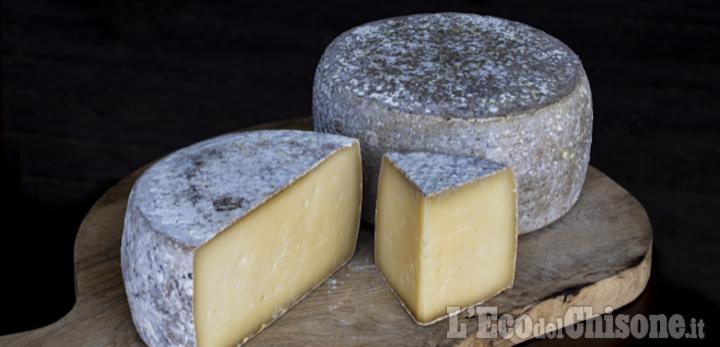 """""""Gusta Pragelato"""" al via con formaggi e cultura del territorio"""