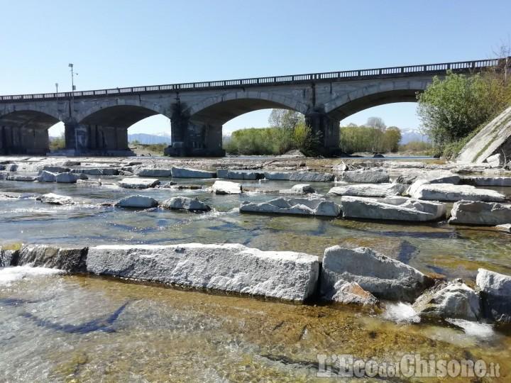 """Ecco come i pesci potranno """"risalire"""" il Po: la """"scala"""" realizzata a Villafranca"""