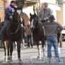 Foto Gallery: Moretta: incanto degli animali per S. Antonio