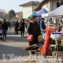 Foto Gallery: Piobesi: week-end positivo per la Fiera autunnale