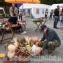 Foto Gallery: San PietroV.L. Sagra del Fungo