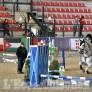 Foto Gallery: Equitazione, a Pinerolo un nuovo concorso nazionale