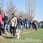 Foto Gallery: Pinerolo, in più di 600 alla Lions Walk