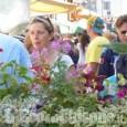 """A Ceana Torinese è iniziata la tre giorni della """"Festa del Maggiociondolo"""""""