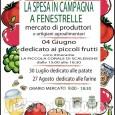 Fenestrelle: La spesa in campagna, piccoli frutti in piazza