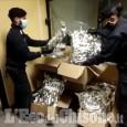 Orbassano: intercettato al Sito un camion che trasportava marijuana, due arrestati