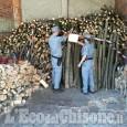 Cumiana: rubava legname in un bosco, denunciato 64enne
