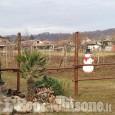 Bruino: vandali in azione, danneggiato l'addobbo natalizio nella vigna del Tokaj