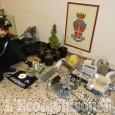 Saluzzo: una serra in casa per coltivare la cannabis, arrestato