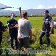 Nel saluzzese i controlli dei carabinieri per contrastare il lavoro irregolare nei campi