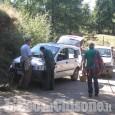 Val Germanasca: 176 cercatori di funghi controllati, 31 sanzionati