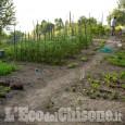 Covid-19: anche in Piemonte si può tornare a gestire gli orti per autoproduzione. Plauso dell'Uncem