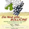 Da noè alle bollicine: mostra al Musep di Pinerolo sulla storia della vite e del vino