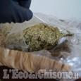Barge: aveva allestito una serra per produrre marijuana, arrestato 50enne