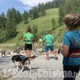 Dog Trekking e altre attività insieme ai Siberian Huskies del Il TeamThe Husky Experience