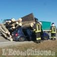 Osasco: auto travolta dai tronchi, muore 60enne, salvo il nipotino