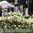 Flor Estatea Bardonecchia: terza edizione con piante, eccellenze agricole e artigianato