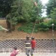 Pinerolo: albero caduto in via dei Martiri, Vigili del fuoco all'opera