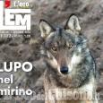 È in edicola L'EM di ottobre con le immagini sul lupo di Batti Gai e l'inchiesta sul grande incendio un anno dopo