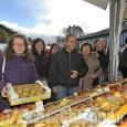 """Cavour """"invasa"""" dalle mele: al via la 36ª edizione di Tuttomele"""