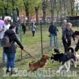 Pinerolo: finalmente un' area sgambamento cani