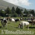 Usseaux: 55ª Fiera zootecnica a Balboutet con miele, lavanda e birra