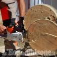 Sblocco delle attività silvoculturali anche in Piemonte da martedì 14 aprile