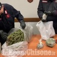 Embedded thumbnail for Cumiana: il video della marijuana sequestrata