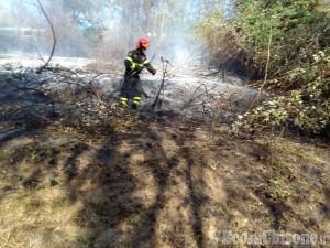 Incendio doloso anche a Porte, domato dai Vigili del fuoco