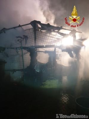 Scalenghe: fiamme nella baracca dei cani, salvati gli animali