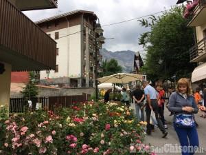 Flor: domenica 14 luglio fiera florovivaistica a Bardonecchia