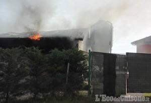 Cumiana: in fiamme allevamento polli