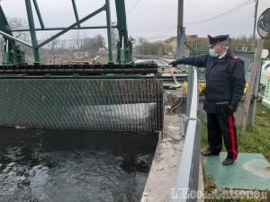 San Secondo: scivola nel canale, 59enne muore affogata in via Fossat