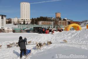 Sestriere: stagione anticipata per i cani da slitta