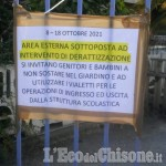 Vinovo: topi alla scuola materna, situazione in fase di risoluzione