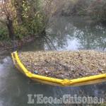 Vinovo: scarico abusivo nel canale dei Mulini