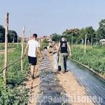 Rivalta: un altro colpo a cascina Mellano, ladri in fuga con i mezzi agricoli appena ricomprati