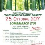 """""""Coltivazione di bambù gigante"""": convegno a Lombriasco"""