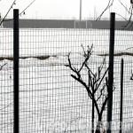 Calcio: verso il rinvio totale dell'attività in Piemonte