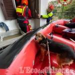 Maltempo, situazione drammatica a Cardè: oltre un metro d'acqua in centro