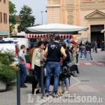 Castagnole: annullata la 147^ fiera autunnale