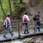 Pinasca: le prelibatezze del vallone di Grandubbione nell'itinerario personalizzato