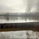 Allerta meteo, Villafranca: esondato il Po